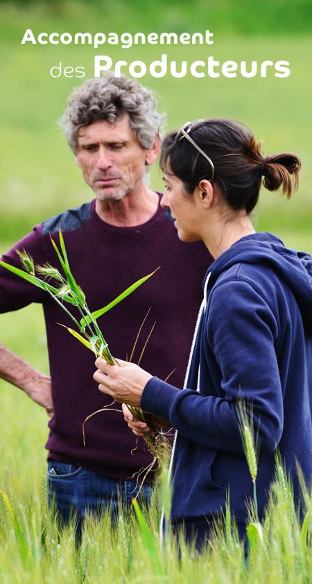 Agribio Union, coopérative biologique : accompagnement des producteurs