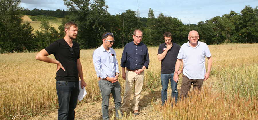 Agribio Union, organic wheat producer
