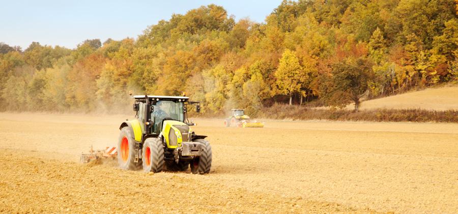 Agribio Union, producteur de céréales biologiques